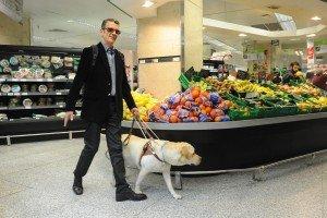 Perros para ciegos